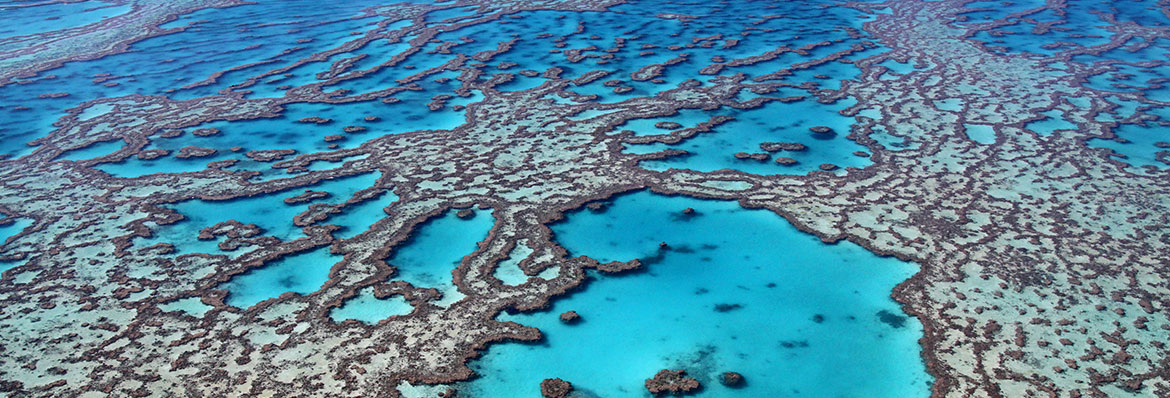 an overview of the great barrier reef in queensland Great barrier reef innovation fund the great barrier reef innovation fund is the queensland government's $9 million investment over four years (2016–2020) as part of the queensland reef.