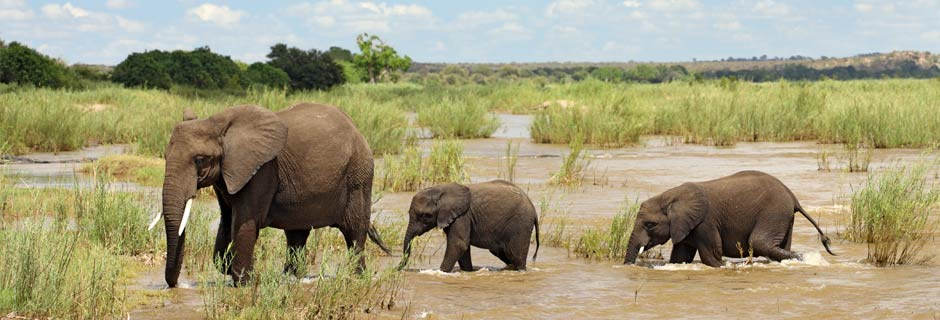 Africas Top Safari Vacation Destinations