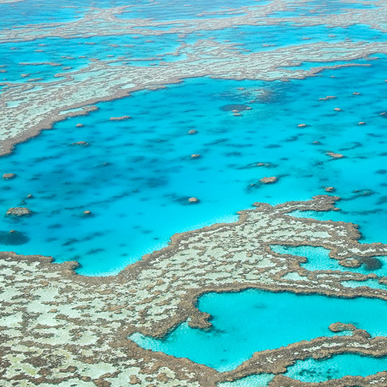 How to see... the Great Barrier Reef & Whitsundays