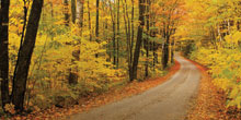 New England Spectacular Fall Foliage tour