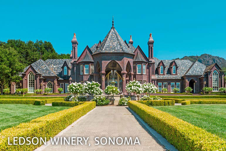 Ledson Winery