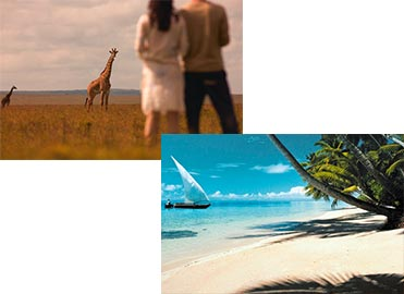 African safari vs beach escapes