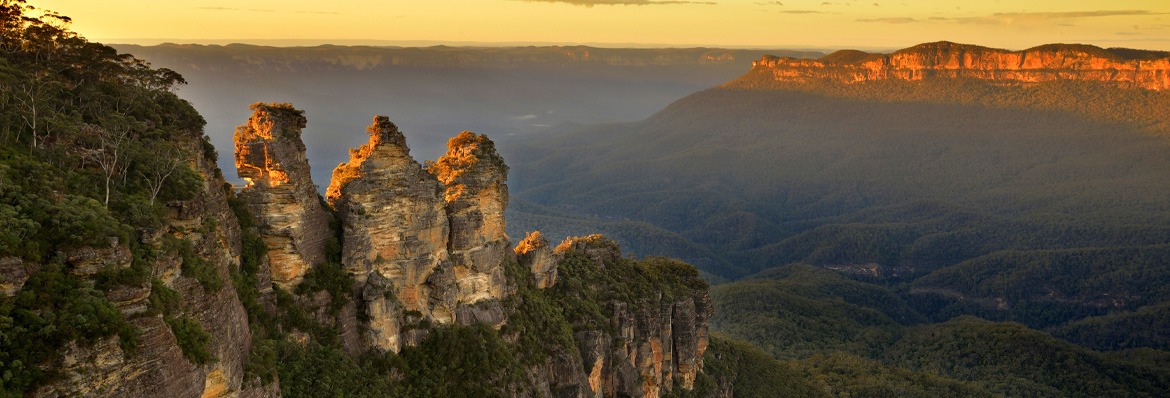 Australia's Blue Mountains after the bushfires