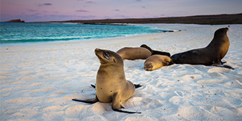 Top 10 Galapagos Highlights