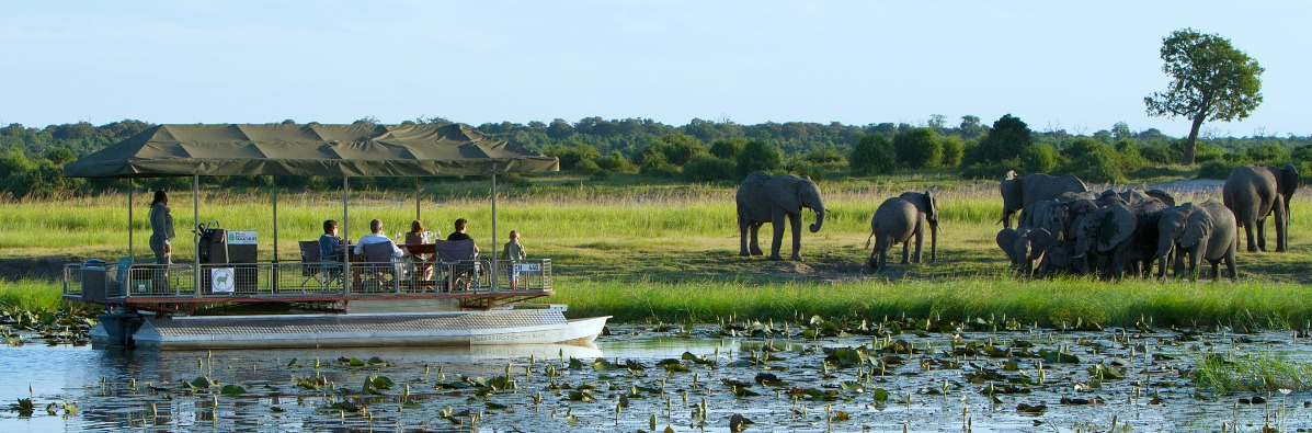 An insider's guide to a Botswana holiday
