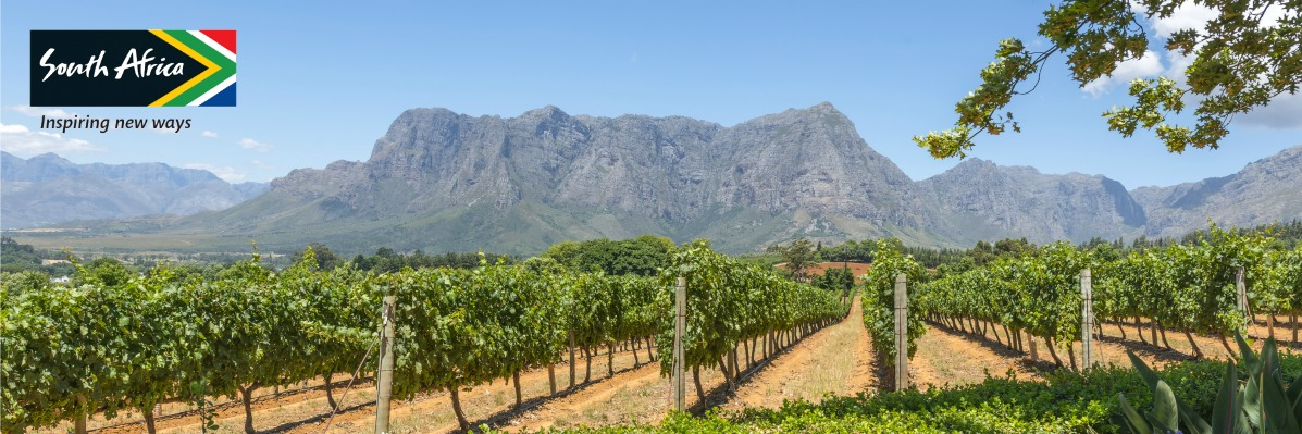From Cape grapes to bunny chow: The Flavours of South Africa