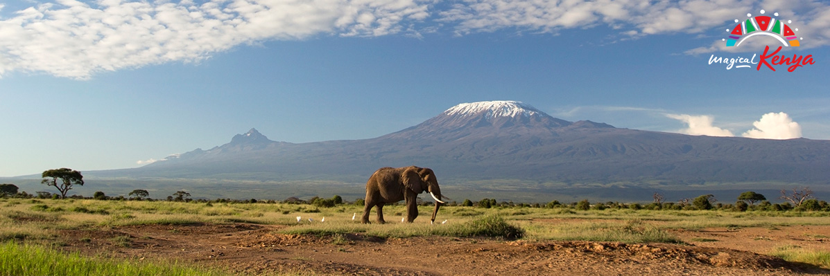 Why visit Kenya? Our guide to wildlife, culture & beach