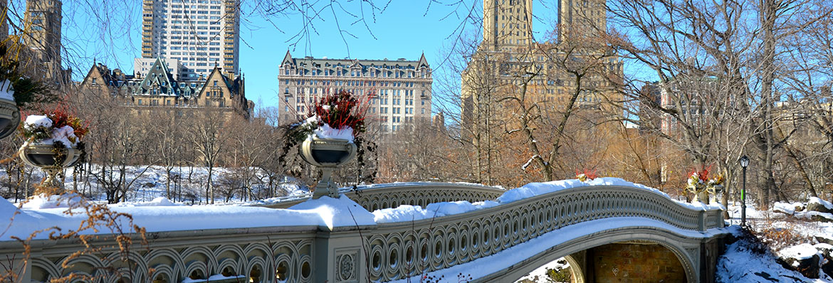 New York Christmas Tours