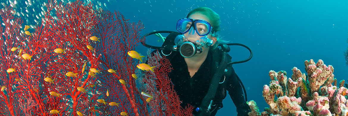 Of The Best Places To Dive In The Indian Ocean Kuoni - 6 amazing underwater attractions