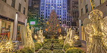 A Christmas fairytale in New York