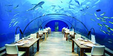 An undersea dining experience you won't forget