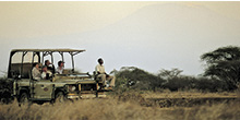Porini: A safari experience to remember