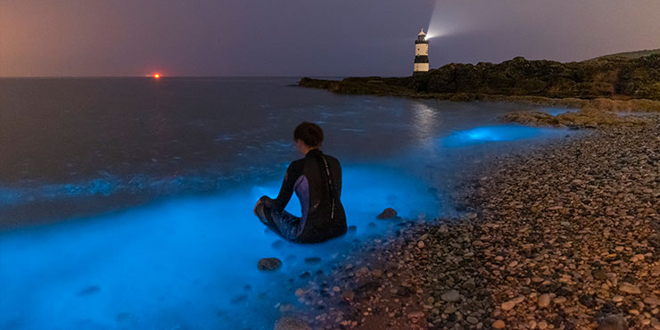 Bioluminescent Plankton at Penmon Point Anglesey. © Kris Williams