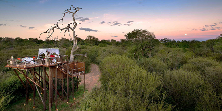 Treehouse at Lion Sands, South Africa