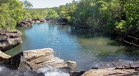Darwin, Kakadu and the Top End