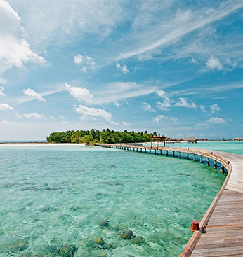 The Maldives: A dream destination