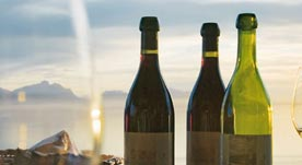 5 wine experts on European wines