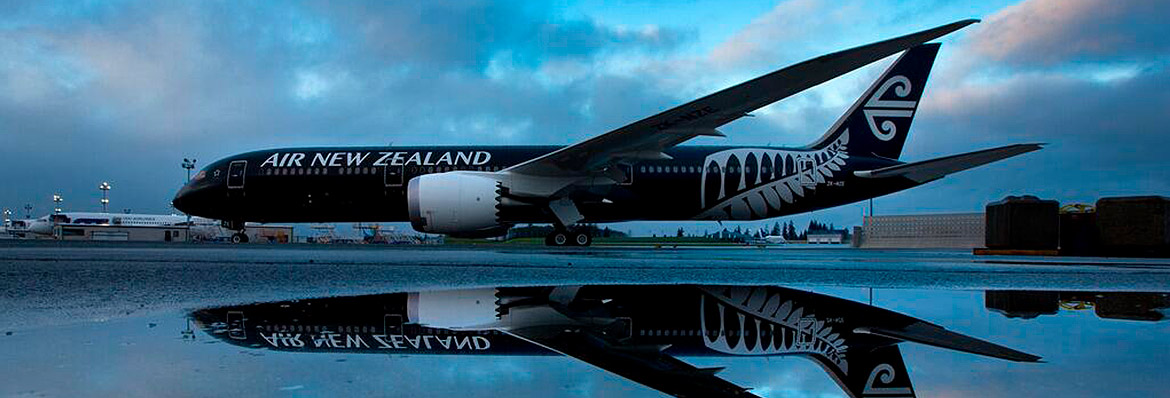 Air New Zealand Assignment