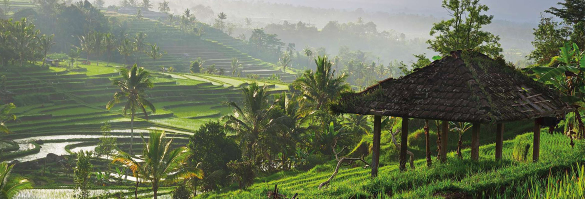 Luxury holidays in Indonesia